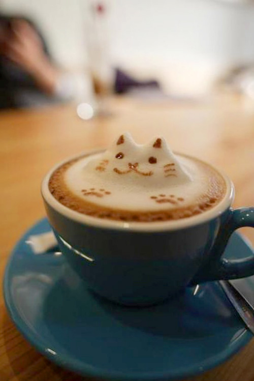Kitty face in cappuchino