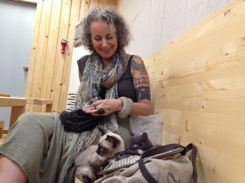 Eco Fashion author Sass Brown at a cat cafe in Korea