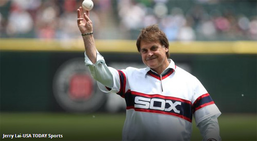 "3-time World Series Champion manager Tony La Russa has 17 cats! He talks about ""people rescuing animals, and animals rescuing people."" - CatFaeries.com"