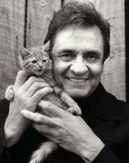 johnny-cash-kitten-500